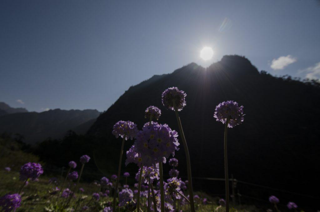 Eastern Himalaya